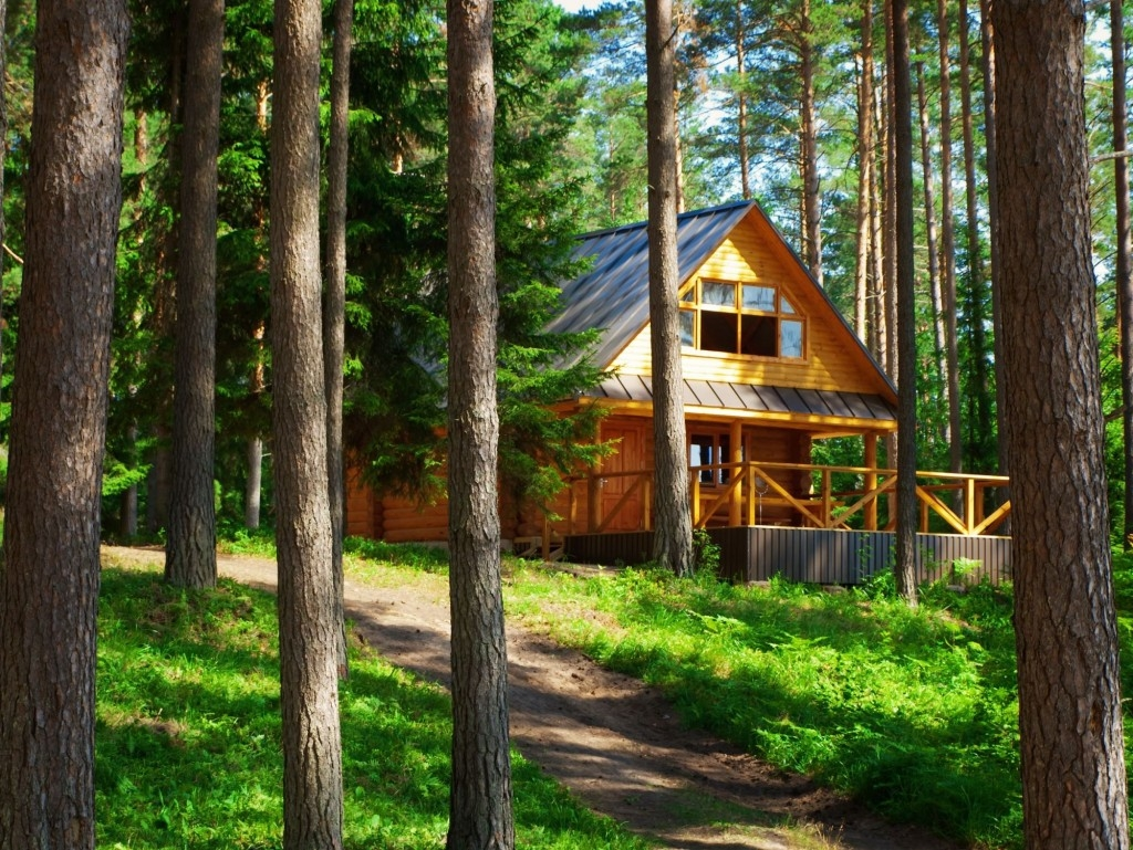 Letní chaty jsou pro roztoče něco jako exotická dovolená pro nás