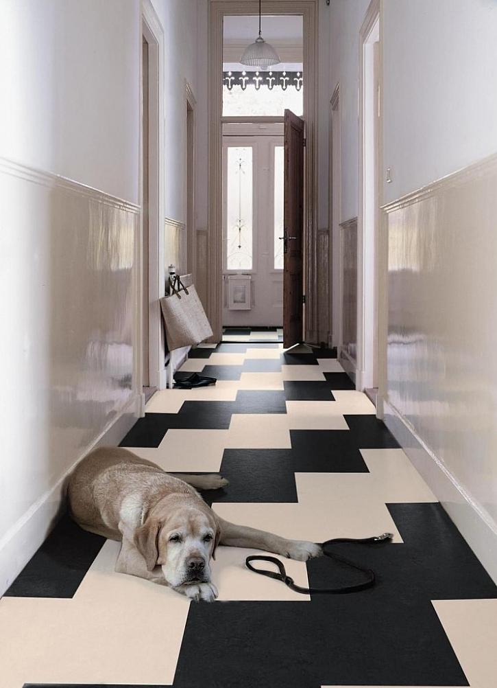 Konstrukce podlahy musí splňovat podmínky odolnosti, neprůzvučnosti, protipožární bezpečnosti i hygienických norem