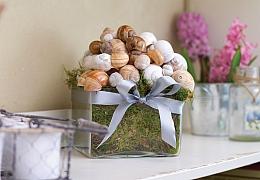 Jak vyrobit romantickou dekoraci ze šnečích ulit