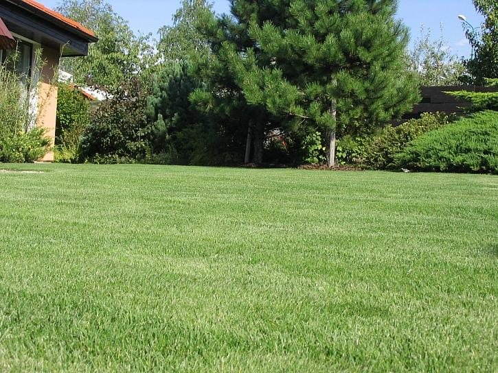 Šťáva pro Váš trávník