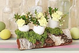 Březové polínko může být součástí velikonoční dekorace