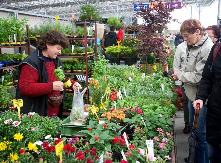 Pozvánka na jarní výstavu květin Floria do Kroměříže