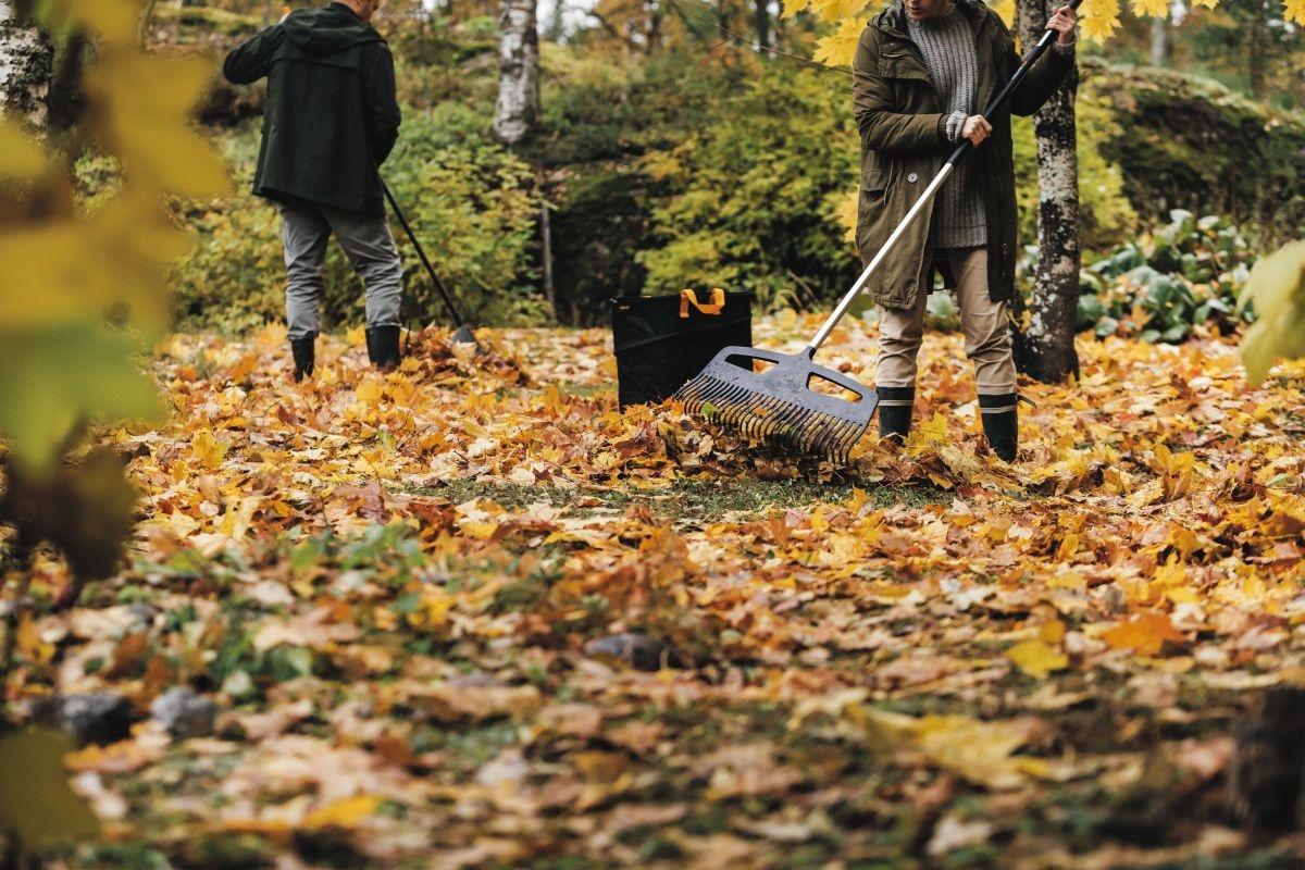 K podzimnímu úklidu zahrady patří hrabání listí