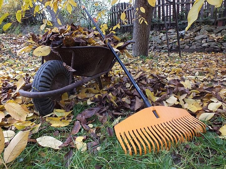 Padá listí, Fiskars sviští aneb Zahradní hrábě Fiskars