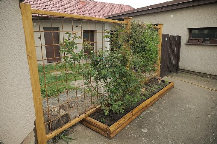 Pepa vyrobí nový plot ze dřeva a kari sítě