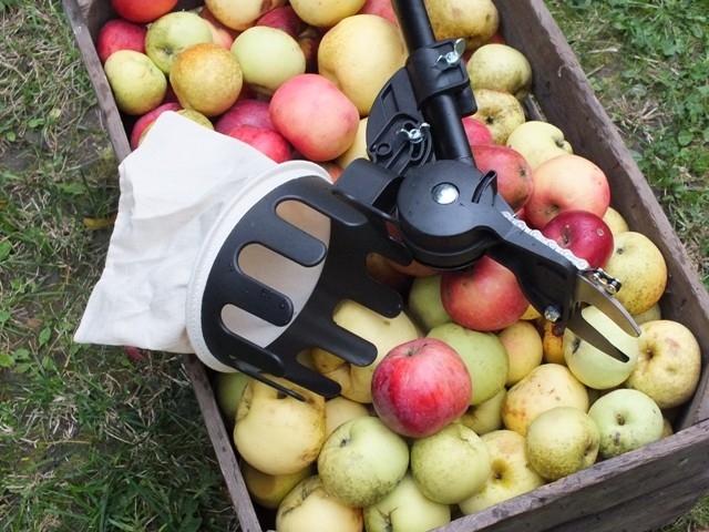 Na jablka s Fiskarsem