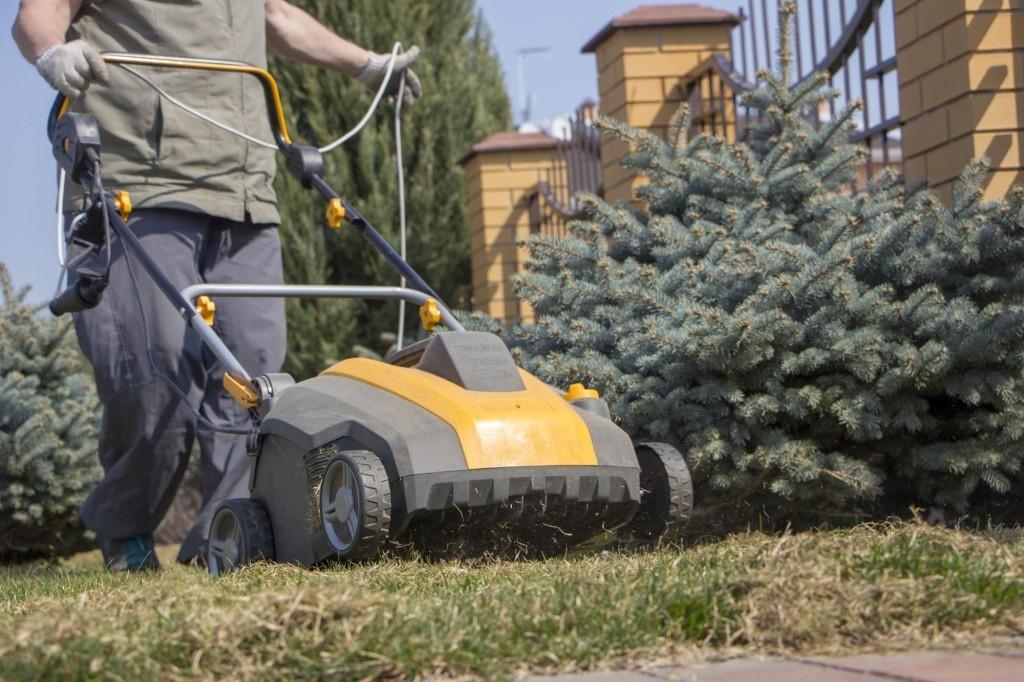Údržba trávníku: jak na to?
