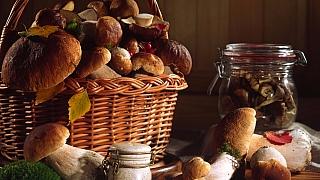 Jak zpracovat a uskladnit houby na zimu aneb Co spřebytkem podzimních úlovků