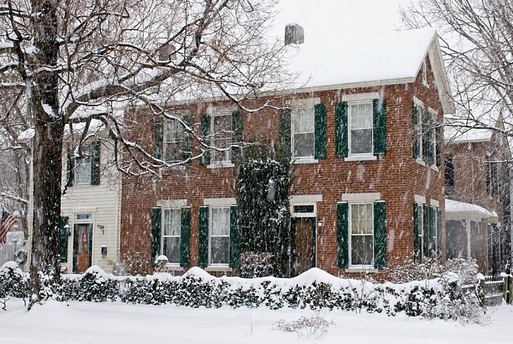 Živý plot stříhejte tak, aby jej vrstva sněhu nepoškodila