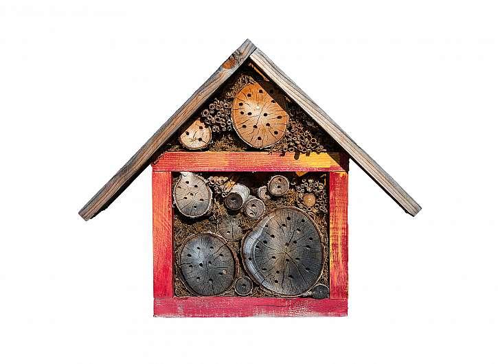 Hmyzí dům