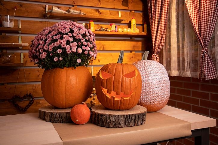 Dekorace z dýní udělá radost celý podzim (Zdroj: Prima DOMA