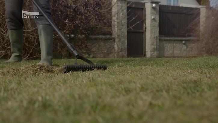 Víte, jak se postarat o trávník po zimě? (Zdroj: Péče o trávník po zimě)