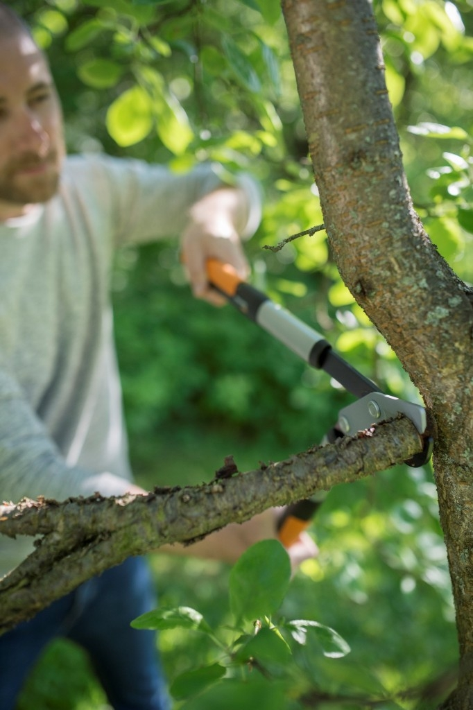 Nůžky na silné větve PowerGear X jsou nůžky s medvědí silou! Patentovaný mechanismus ztrojnásobí vynaloženou sílu a vy tak ustřihnete i silné větve s třikrát menší námahou.