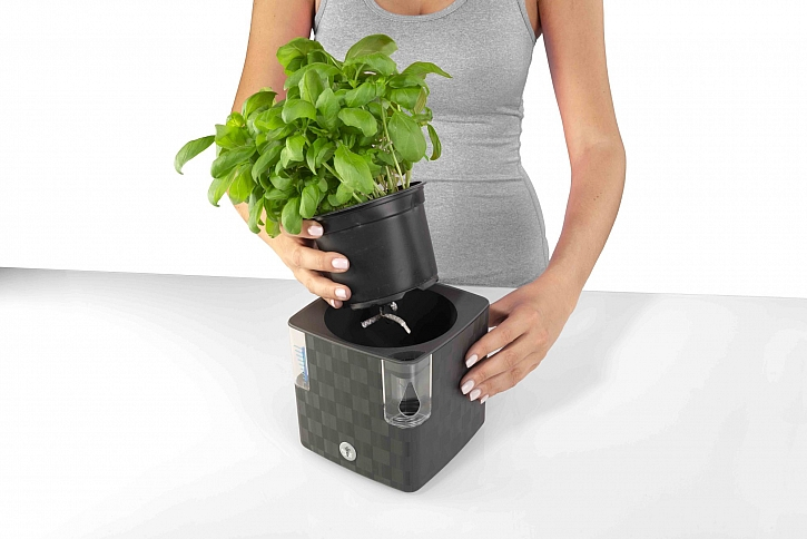 samozavlažovací květináč Cobble 14 anthracite