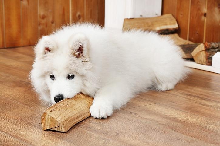 Dřevo + podlahové topení = váš nejvyšší komfort