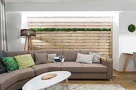 Ekologická proměna panelákového bytu pro tátu a syna