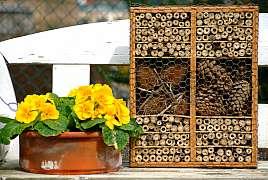 Přilákejte užitečný hmyz do své zahrady pomocí hmyzích hotelů