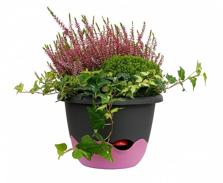 Historie samozavlažovacích květináčů