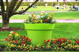 Chcete mít krásnou zahradu po celý rok tak, aby hrála všemi barvami?