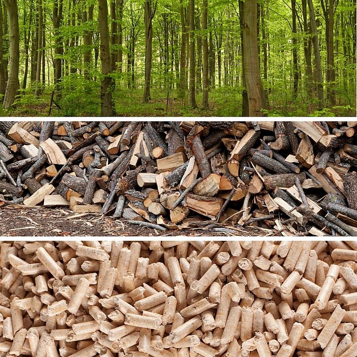 Les-drevo-pelety