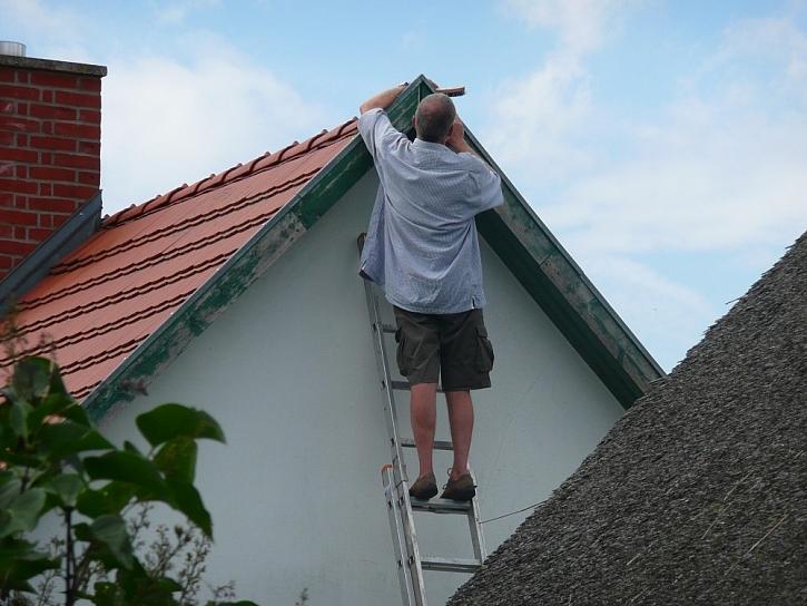Pálené a betonové tašky na střechu