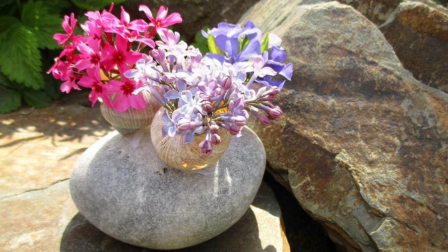 Jak se dá udělat malý zázrak aneb Když vám pod rukama rozkvete kámen