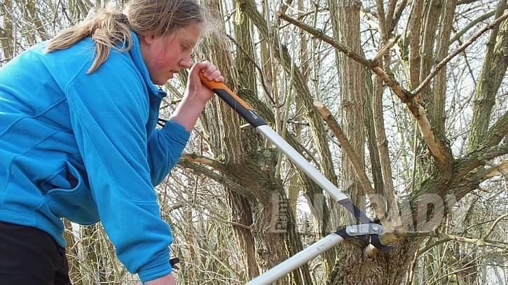 Na silné suché větve můžeme použít obouruční nůžky