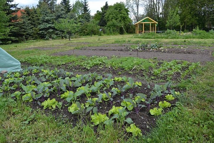 Komunitní zahrada, která Vás očaruje útulností i příběhy
