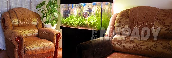 Relax u akvária
