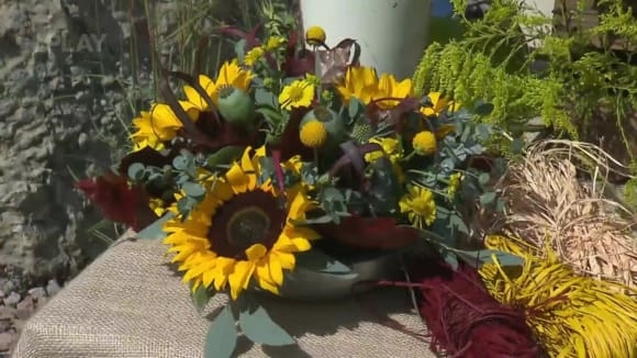 Aranžování slunečnic