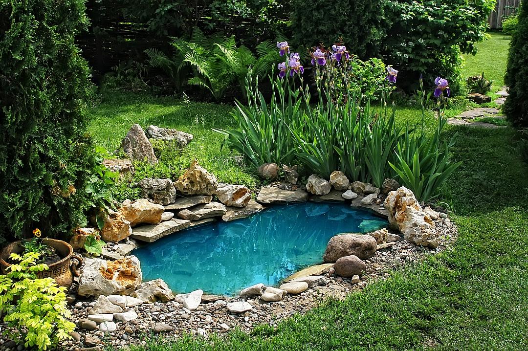 obrázek tématu: Zahradní jezírka