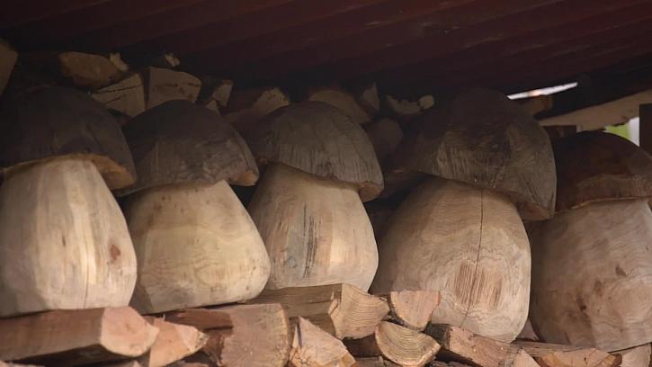 Dřevěné hřiby