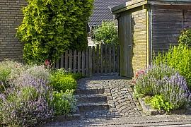 Jaro je vhodnou dobou pro nový bylinkový záhon