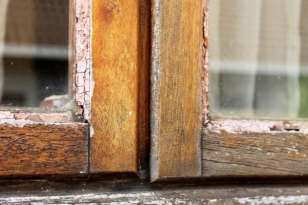 obrázek tématu: Výběr oken a jejich údržba