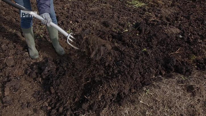 Jak si na podzim připravit půdu a čím hnojit?