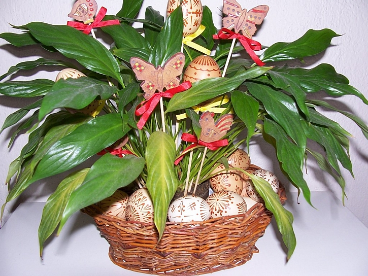Inspirace na velikonoční výzdobu