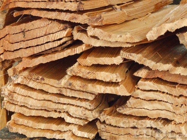 Střecha, která roste v lese