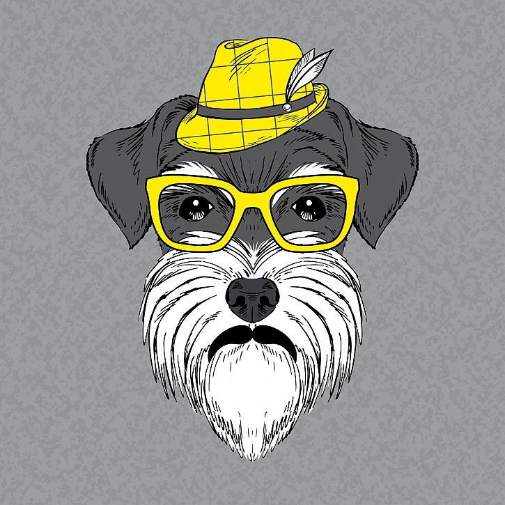Žlutý pes