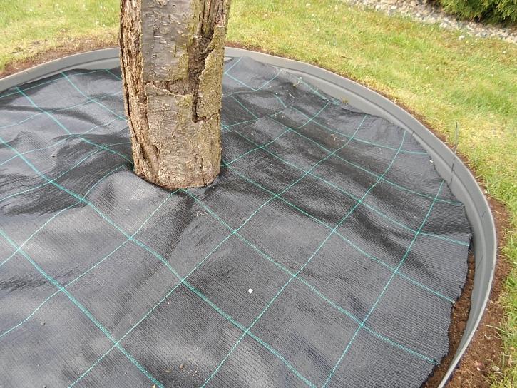 Kolem stromu nejprve položte geotextilii