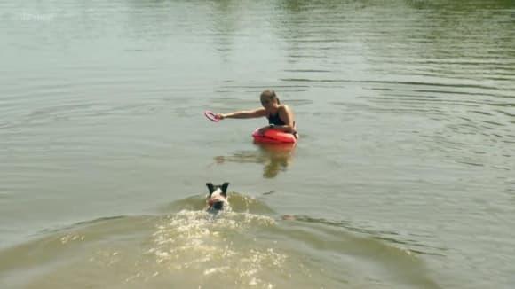 Jak přimět psa, aby se nebál vody