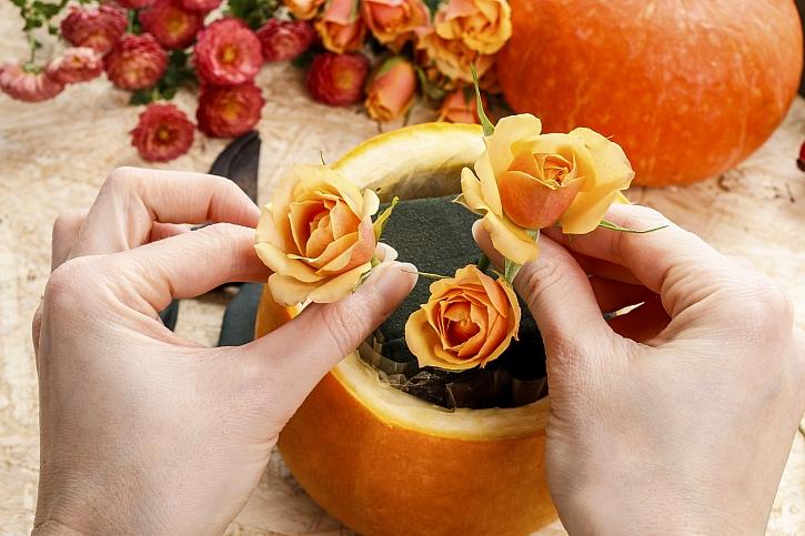 Růže napíchat do hmoty