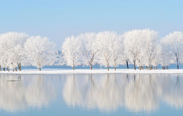 Vánoční pranostiky se opíraly o dlouhodobá pozorování přírody (Zdroj: Depositphotos)