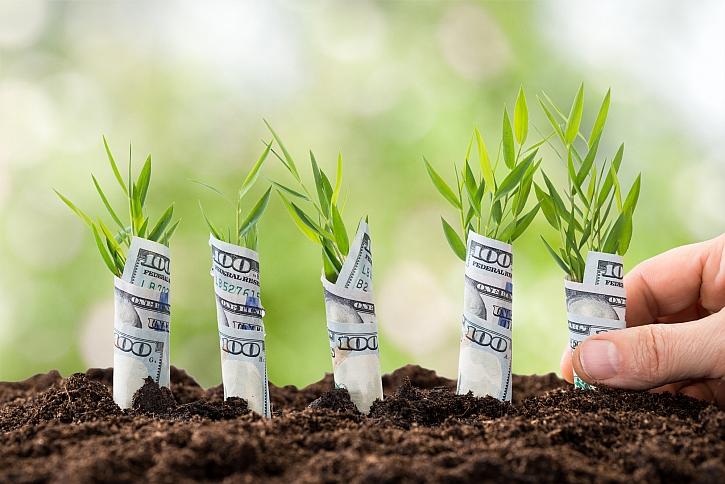Rostliny bankovek