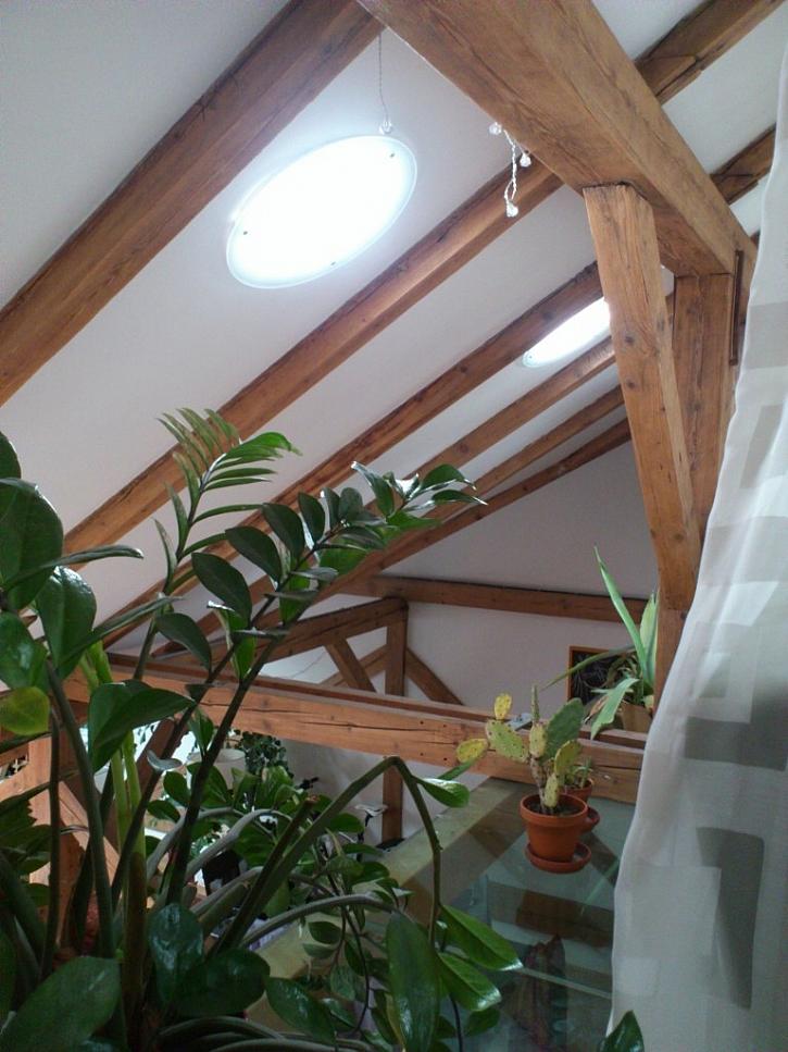 Jasné denní světlo vnesou do vašeho bytu světlovody Solatube se dozvíte na veletrhu Střechy Praha