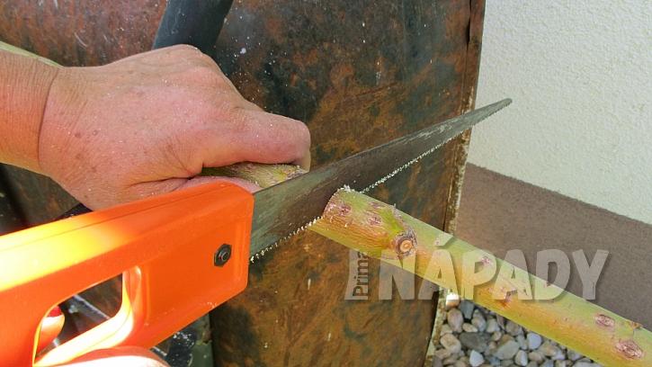 Jak si udělat závěsnou tyč na sušení bylinek na zahradě 1