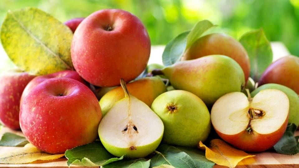 Co se stane, když dáme dohromady jablka ahrušky?
