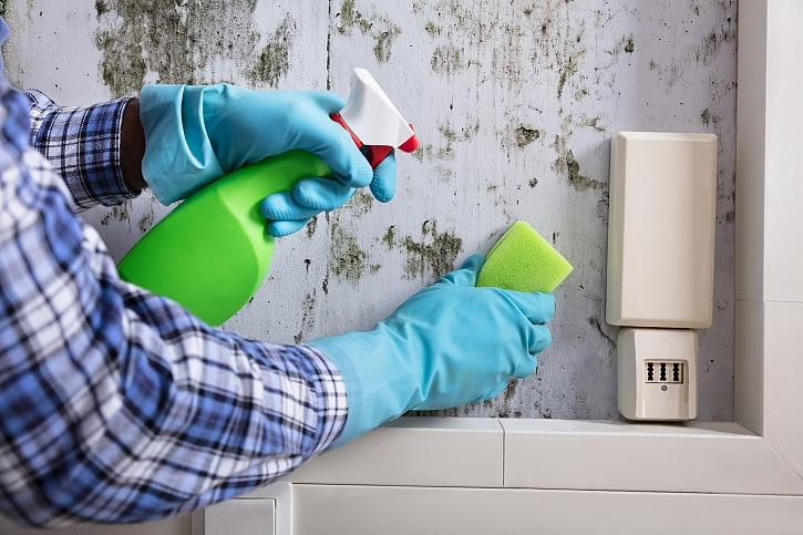 Vznik plísní může být v důsledku našeho nevhodného způsobu bydlení (Zdroj: Depositphotos)