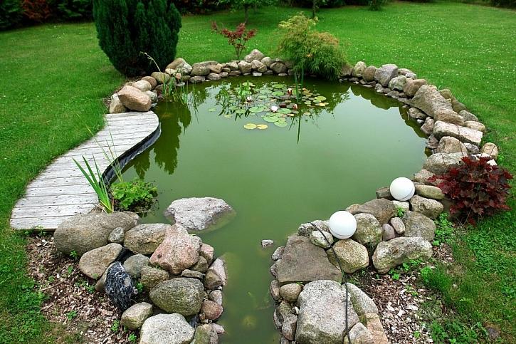 Zazimovat jezírko na zahradě se vyplatí, na jaře vás odmění