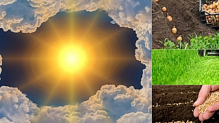 Předpověď počasí na víkend: Co dělat na zahradě