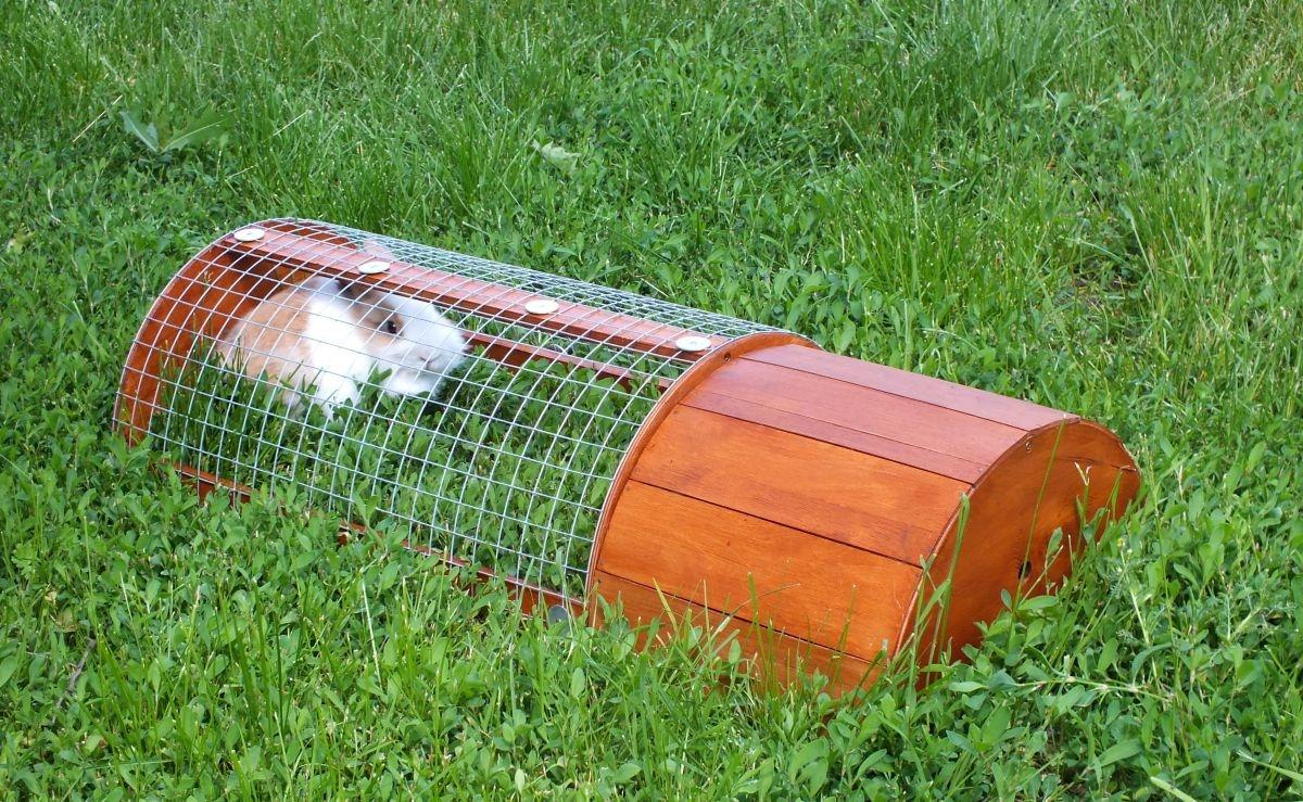 Domeček a výběh pro morče nebo králíčka na zahrádku